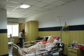 Orthopedics and Trauma